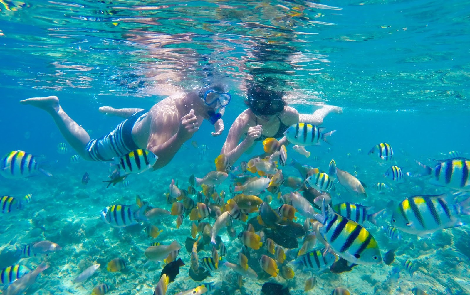 things-to-do-gili-trawangan-villas-edenia-resort-boutique-hotel-snorkeling
