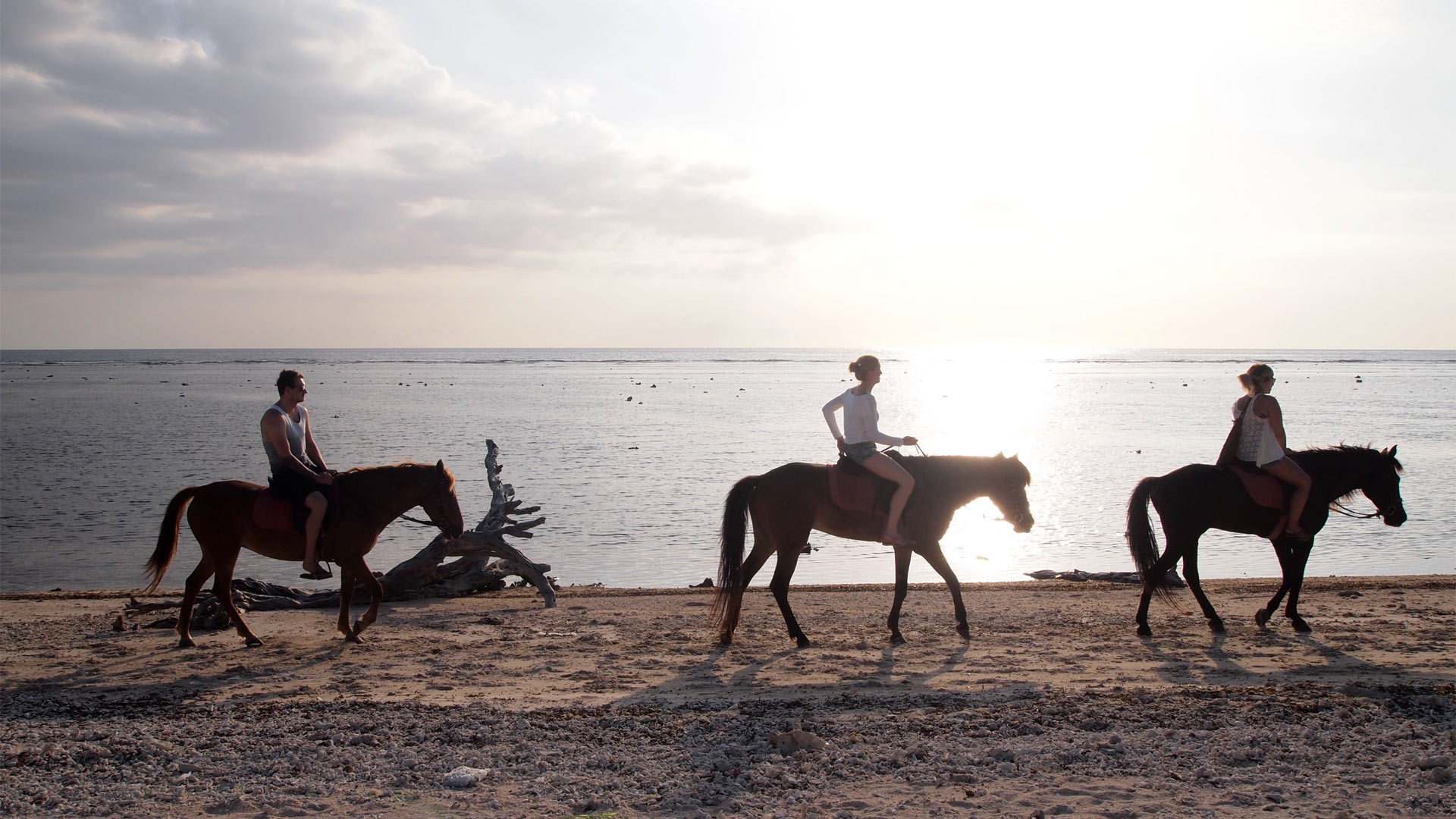 things-to-do-gili-trawangan-villas-edenia-resort-boutique-hotel-horse-riding